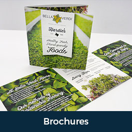 Custom Brochure Printing in Austin, Texas